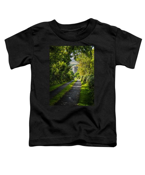 Toddler T-Shirt featuring the photograph Path To Newtown Castle by James Truett