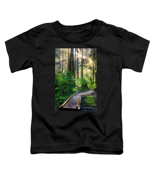 Pathway Into The Light Toddler T-Shirt