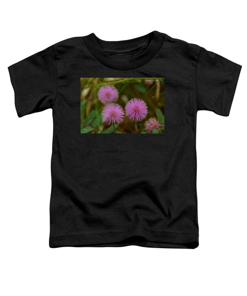 Pink Mimosa Toddler T-Shirt