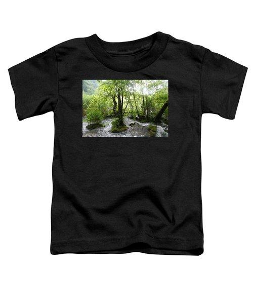 Plitvice Lakes Toddler T-Shirt