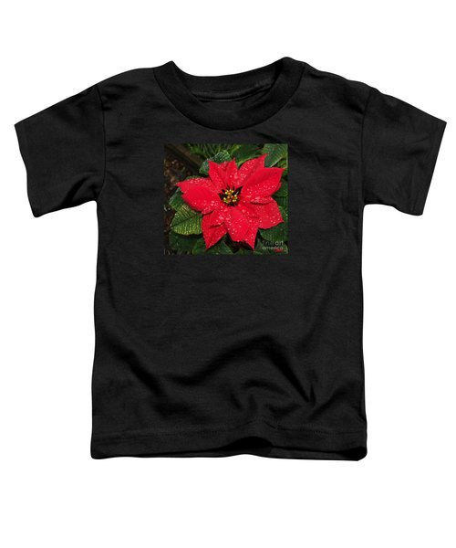 Poinsettia - Frozen In Time Toddler T-Shirt