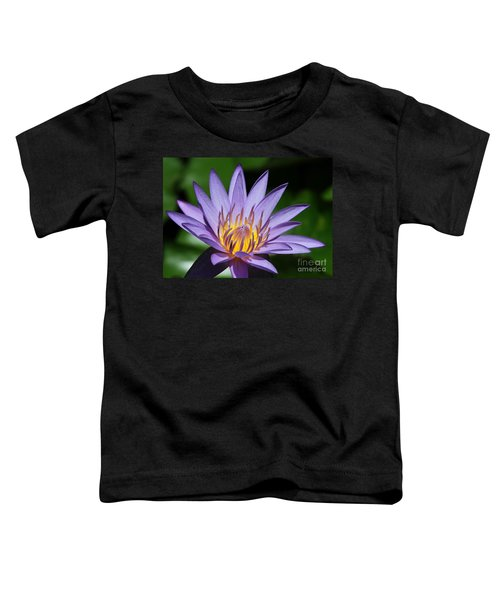 Pretty Purple Petals Toddler T-Shirt