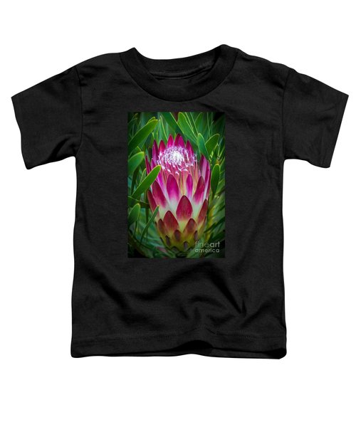 Protea In Pink Toddler T-Shirt