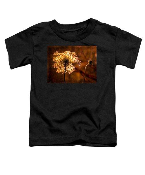 Queen Annes Lace Vintage Toddler T-Shirt