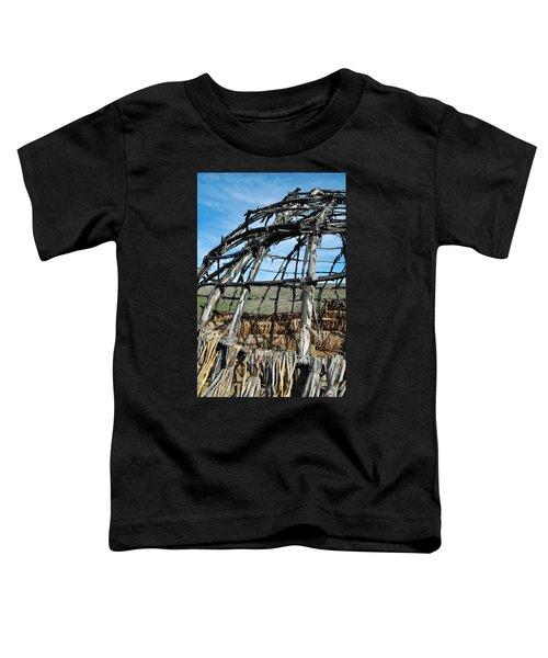 Rancho Sierra Vista Satwiwa Chumash Ap Home Toddler T-Shirt