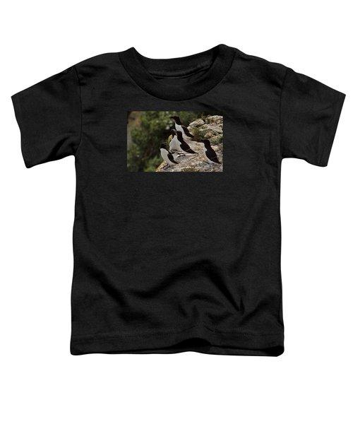 Razorbill Cliff Toddler T-Shirt by Dreamland Media