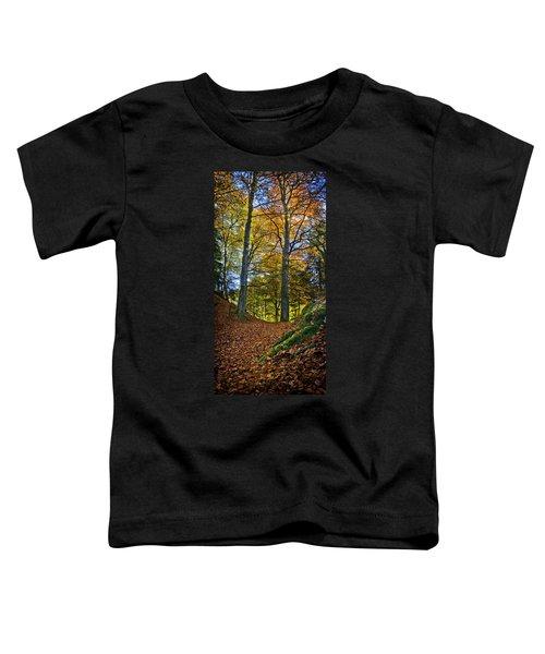 Red Carpet In Reelig Glen During Autumn Toddler T-Shirt