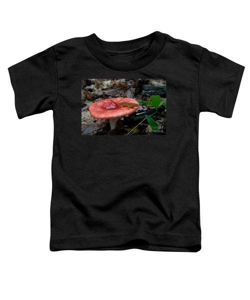 Red Eft On A Mushroom Toddler T-Shirt
