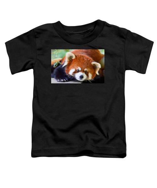 Red Panda Toddler T-Shirt
