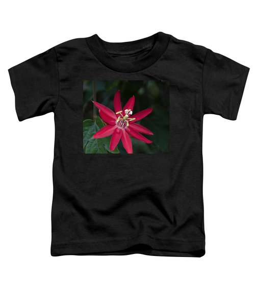 Red Passion Flower Toddler T-Shirt