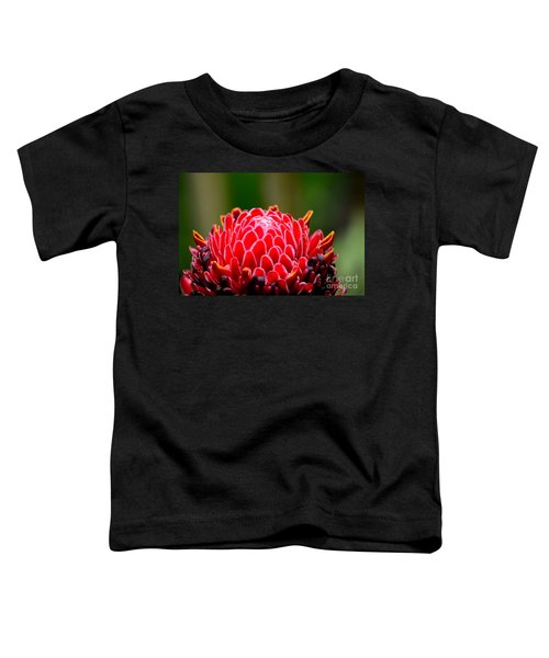 Red Torch Ginger Flower Head From Tropics Singapore Toddler T-Shirt