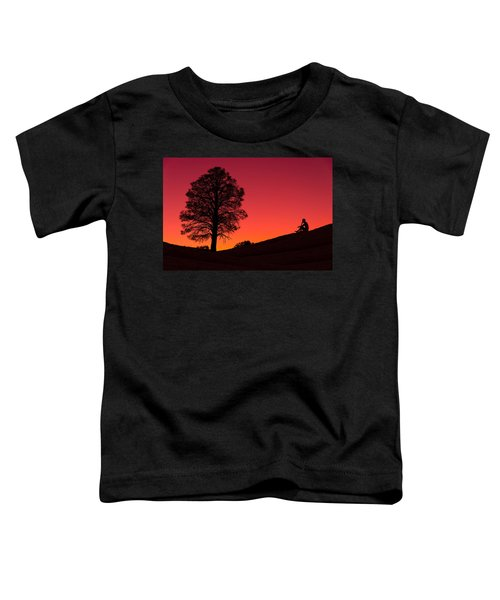 Reminiscing Toddler T-Shirt