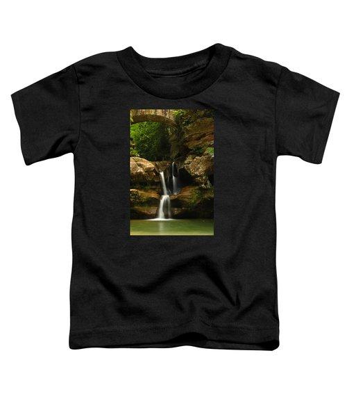 Resplendent Toddler T-Shirt
