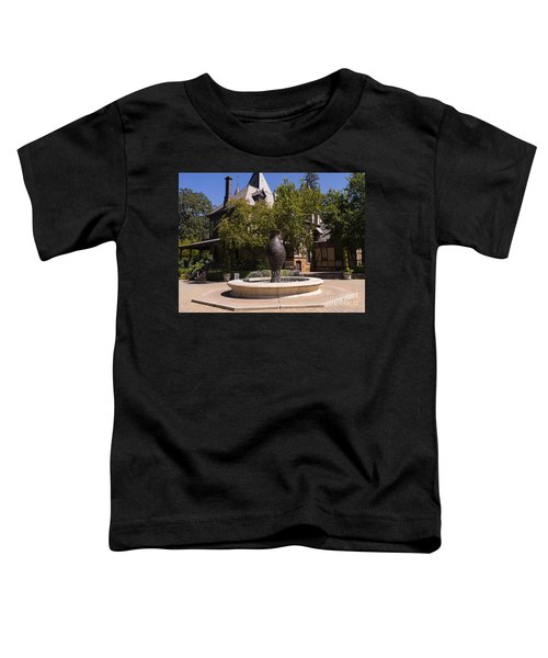 Rhine House At Beringer Winery St Helena Napa California Dsc1728 Toddler T-Shirt