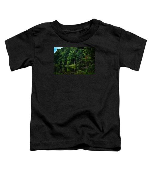 Rose Lake Beauty Toddler T-Shirt