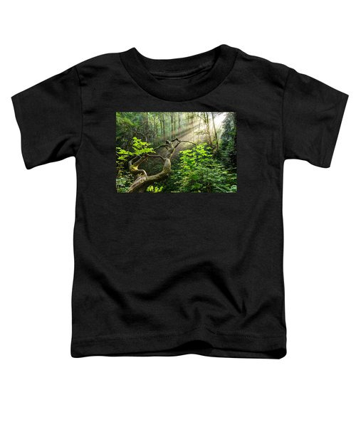Sacred Grove Toddler T-Shirt