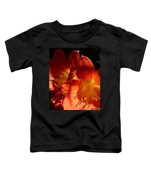 Shining Star Toddler T-Shirt