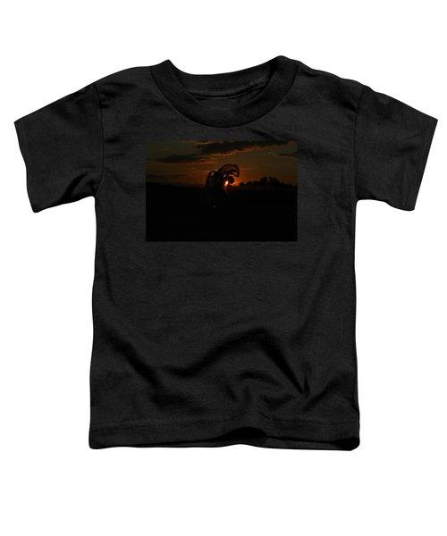 Silk Sunset Toddler T-Shirt