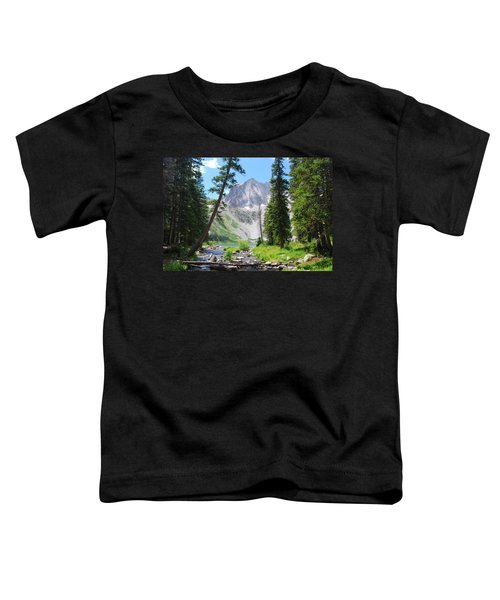 Snowmass Peak Landscape Toddler T-Shirt
