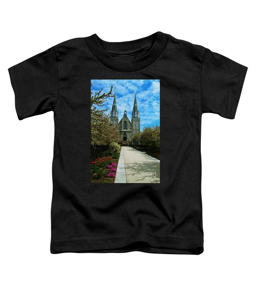 St Thomas Of Villanova Toddler T-Shirt