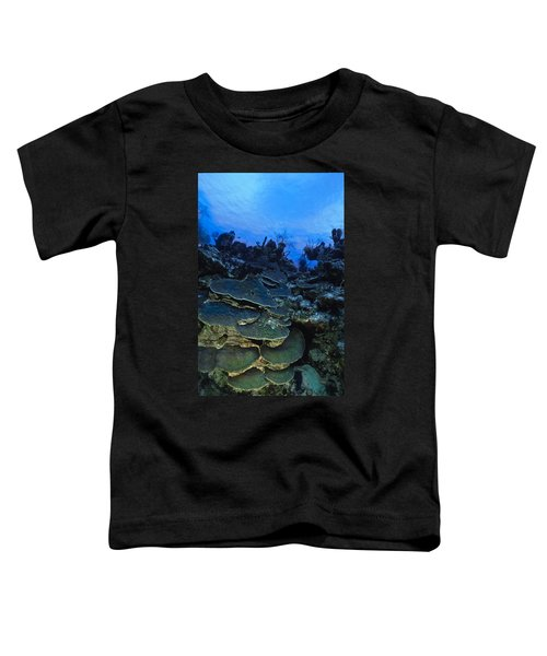 Steps Of The Sea Toddler T-Shirt