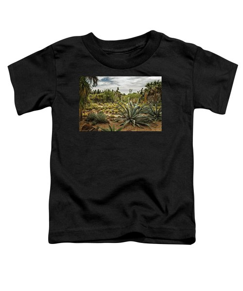 Succulents At Huntington Desert Garden No. 3 Toddler T-Shirt