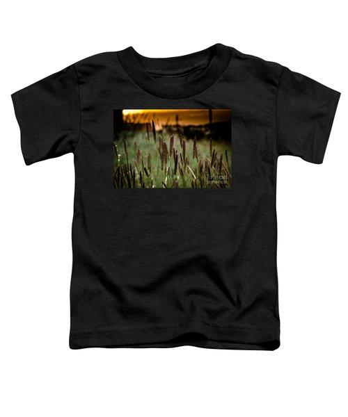 Summer Light Toddler T-Shirt