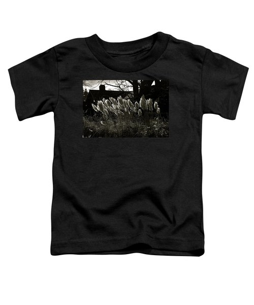 Sun And Shadow Toddler T-Shirt