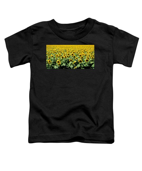 Sunflowers Toddler T-Shirt