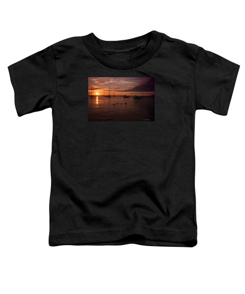 Sunrise Over Lake Michigan Toddler T-Shirt