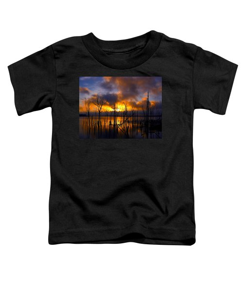 Sunrise Toddler T-Shirt