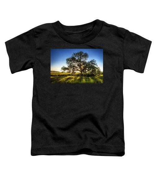 Sunset Oak Toddler T-Shirt