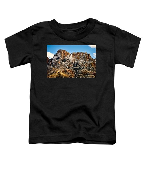Toddler T-Shirt featuring the photograph Table Mountain In Winter 42 by Mark Myhaver