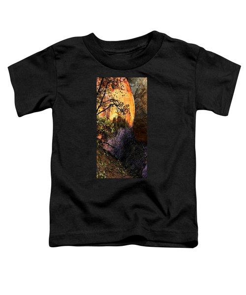 Taylor's 1 Toddler T-Shirt