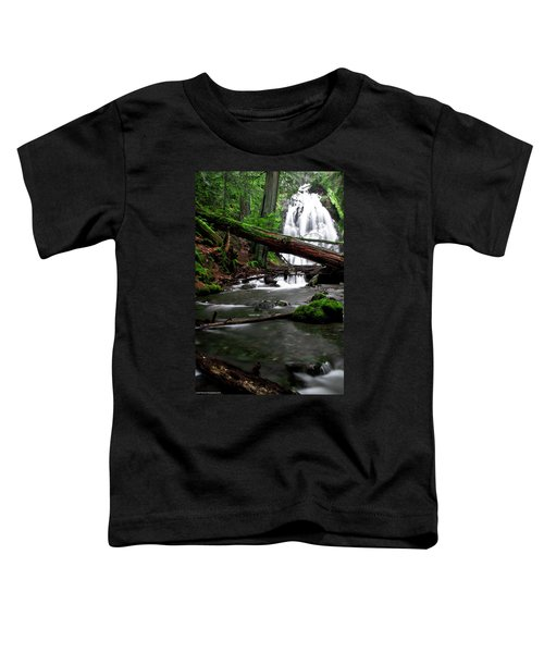 Temperate Old Growth Toddler T-Shirt