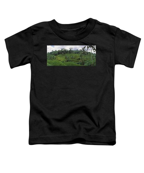 Terraced Rice Field, Bali, Indonesia Toddler T-Shirt