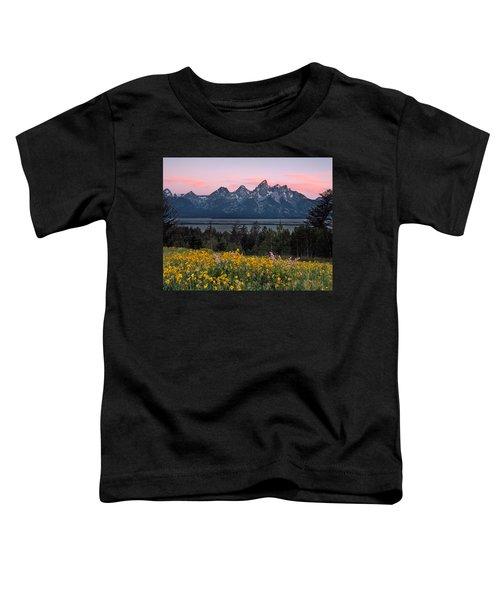 Teton Spring Toddler T-Shirt by Leland D Howard