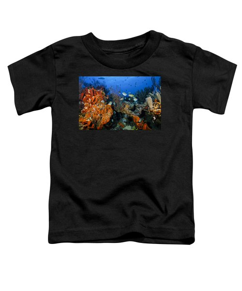 The Active Reef Toddler T-Shirt