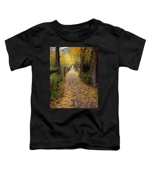The Aspen Trail Toddler T-Shirt
