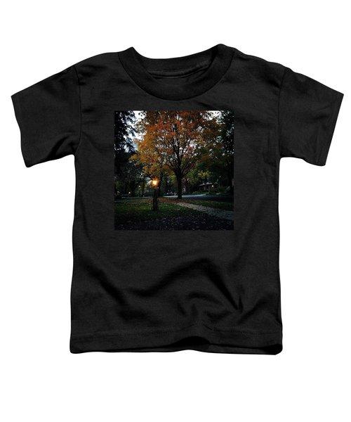 Illuminating Autumn Toddler T-Shirt