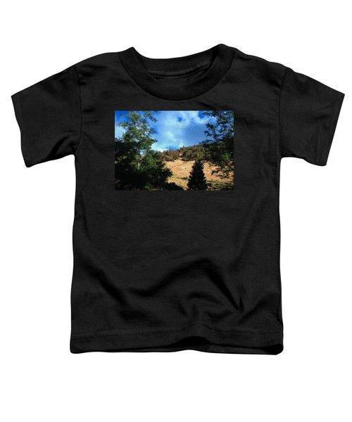 The Hillsides Of Julian Toddler T-Shirt