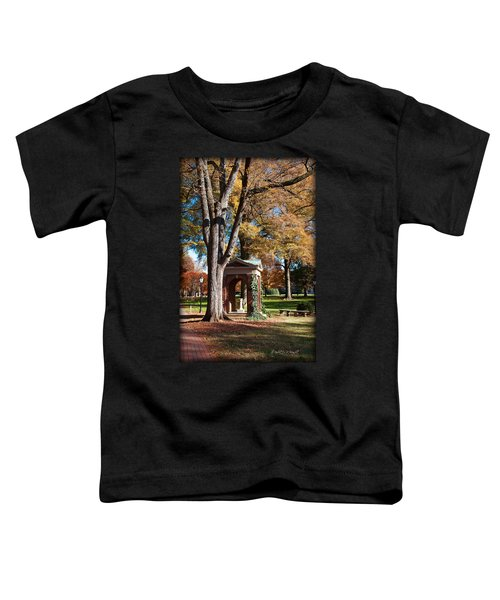 The Well - Davidson College Toddler T-Shirt