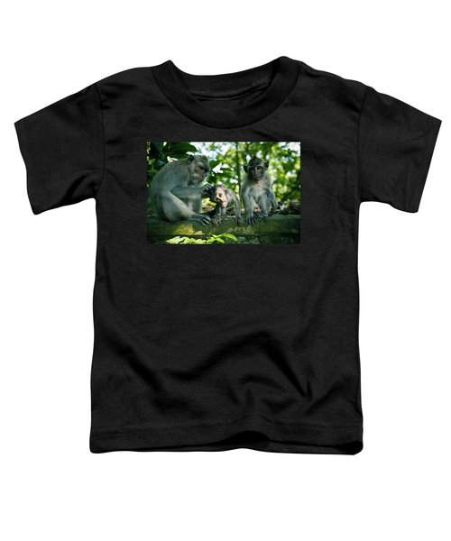 Three Monkeys Sitting On A Stone Wall Toddler T-Shirt