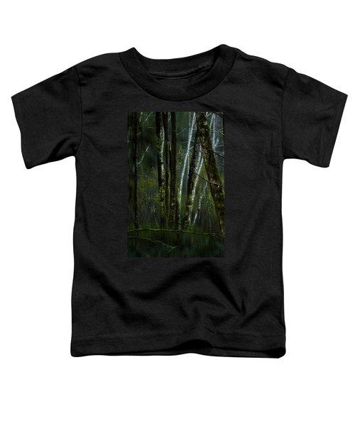 Through A Glass . . . Darkly Toddler T-Shirt