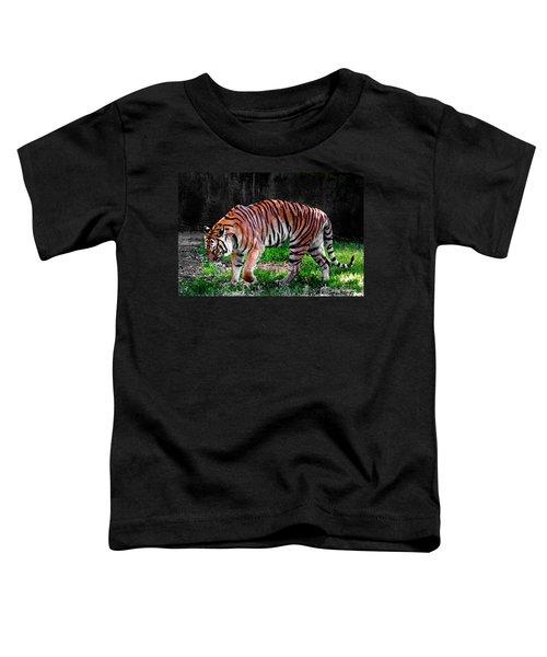 Tiger Tale Toddler T-Shirt