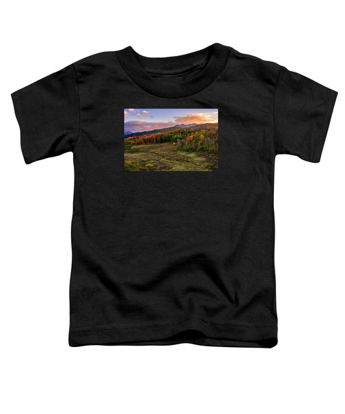 Timp Fall Glow Toddler T-Shirt