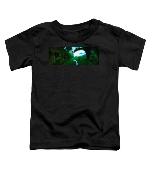 Trail Through A Rainforest, Cayo Toddler T-Shirt