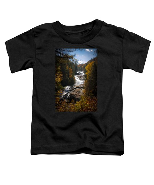 Triple Falls Toddler T-Shirt