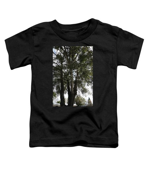 Up-view Of Oak Tree Toddler T-Shirt