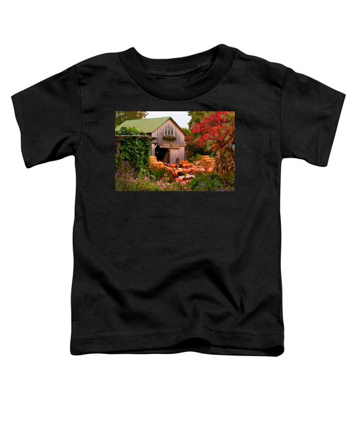 Vermont Pumpkins And Autumn Flowers Toddler T-Shirt